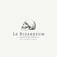 Profile image for lebizarreum