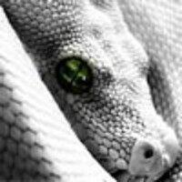 Profile image for bruntynacamuss
