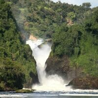 Profile image for murchison falls