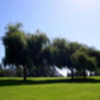 Profile image for joynerowens42bwpjkl