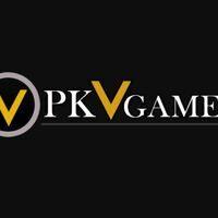 Profile image for PkvGames