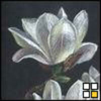 Profile image for clausenmaurer75apmoiz