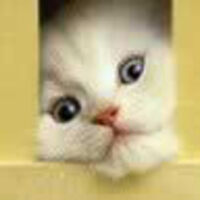 Profile image for ludvigsenbrewer64puskfr