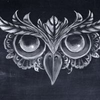 Profile image for Films Oiseau de nuit