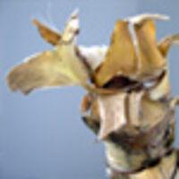 Profile image for foremanbean05hrsept