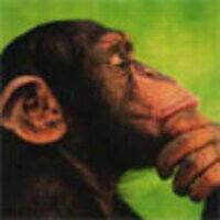 Profile image for halvorsenhovmand91cllrpy