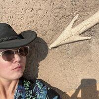 Profile image for Liz Fox