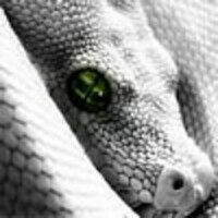 Profile image for mccartneylittle24cylufm