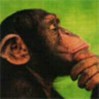 Profile image for thomaskavanaugh9253