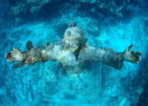 4 Underwater Wonders of Florida