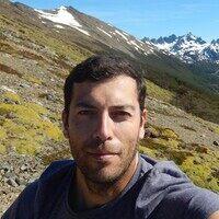 Profile image for Shafik Meghji