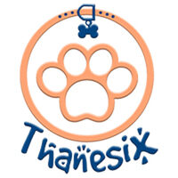 Profile image for thanesix