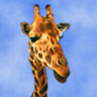 Profile image for huffmanholdohn