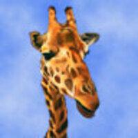 Profile image for langezlfjoyner