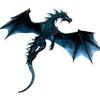 Profile image for WordDragon
