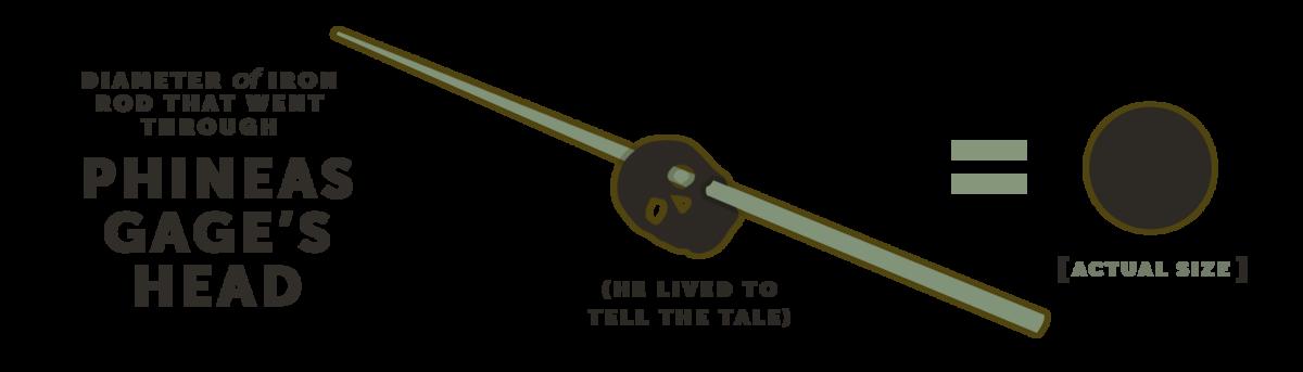Diameter of Iron Rod that went Through Phineus Gage's Head