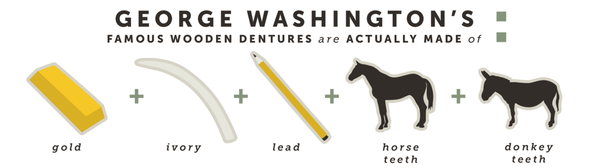 George Washington's famous wooden dentures are actually made of...