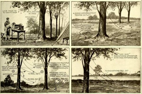 floraphones the wwi plan to turn america's trees into telephones atlas obscura Basic Electrical Wiring Diagrams at couponss.co