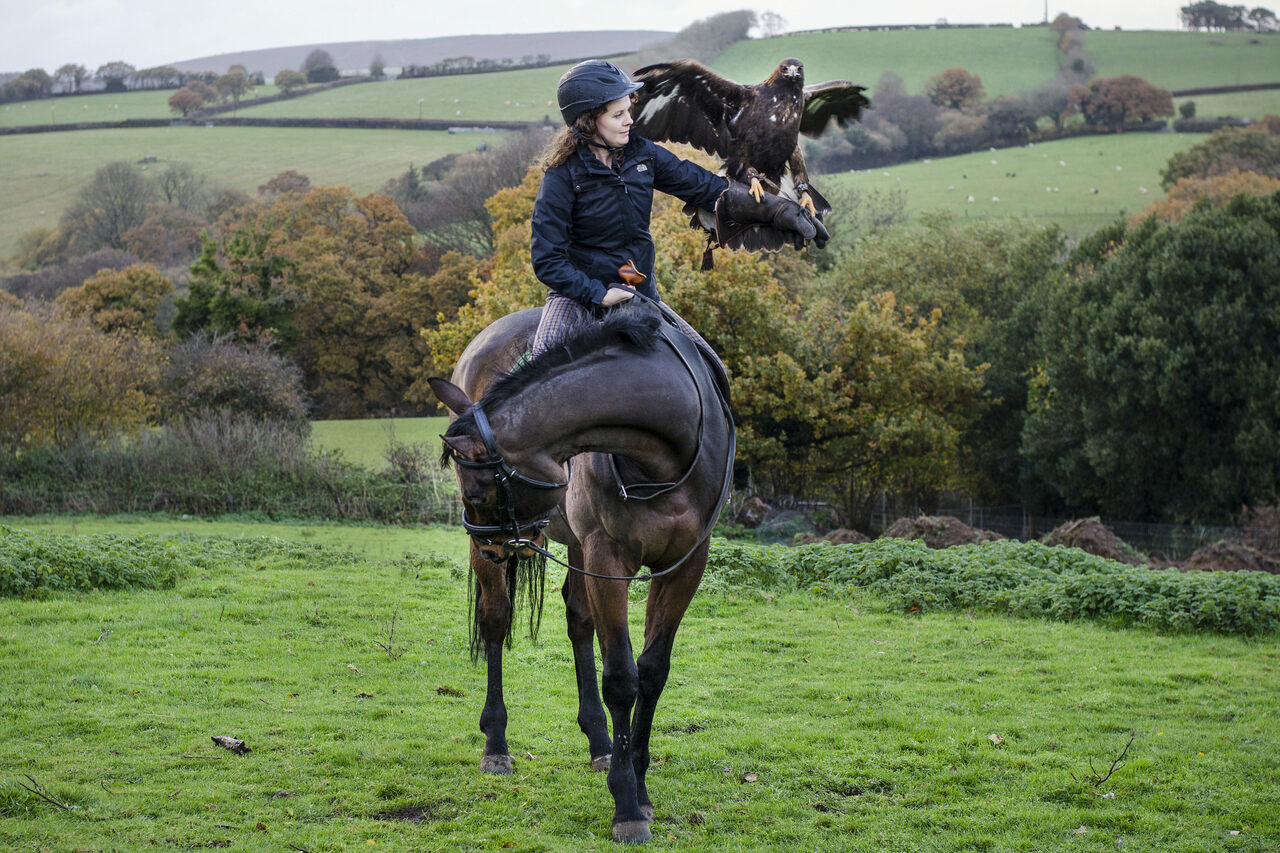 Learning the Ancient Art of Horseback Falconry - Atlas Obscura