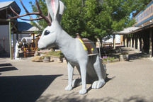 The Secrets of America's Best Rest Stop: Free Ice Water, Donuts, the Cutest Jackalopes in Town
