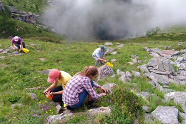 Locals from Val Germanasca foraging wild herbs to make Serpui, a grappa seasoned with wild thyme that is typical of northwest Italy.