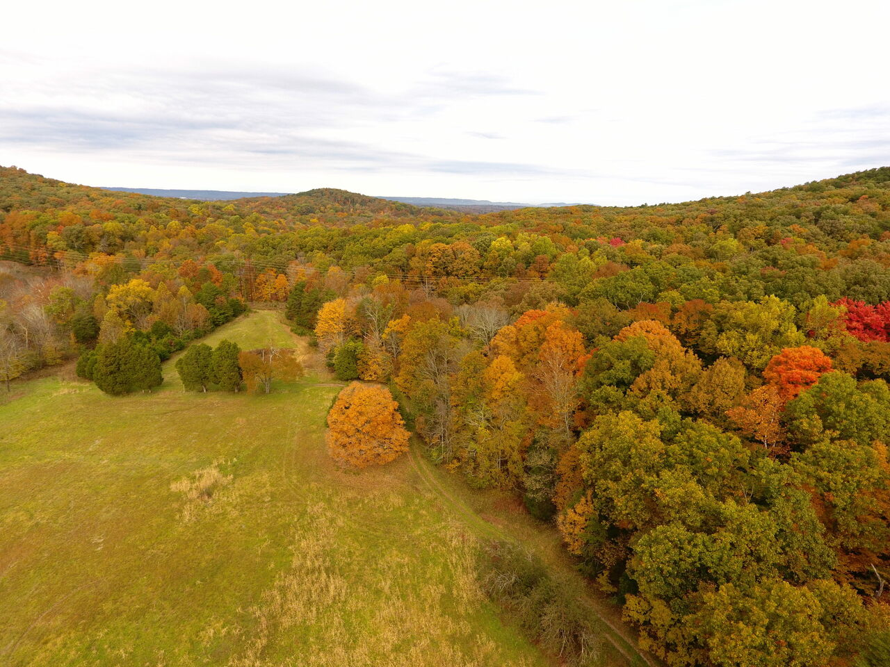 The pipeline threatens part of the Bernheim Research Forest.