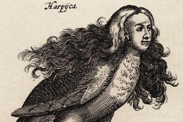 A harpy in Ulisse Aldrovandi's Monstrorum Historia, Bologna, 1642