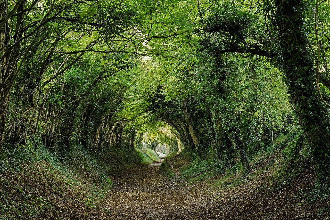 Halnaker, West Sussex, UK.