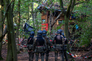 Police raid treehouses at the Hambach Forest campsite.