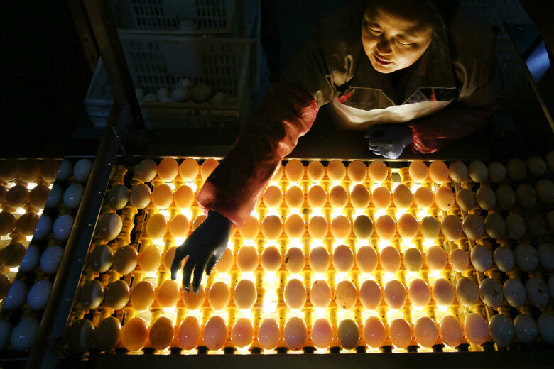 The Chinese City Famous for Eggs With Two Yolks