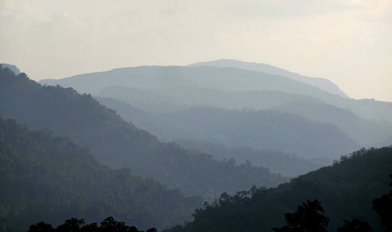 The jungle highlands of Sri Lanka, where humans settled at least 45,000 years ago.