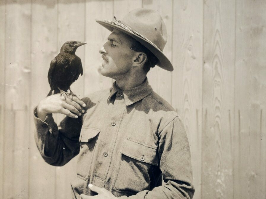 A mascot at the training camp at Plattsburg, New York, taken in 1917.