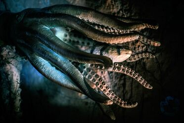 Do climate change monsters have a dozen tentacles and a thirst for blood?