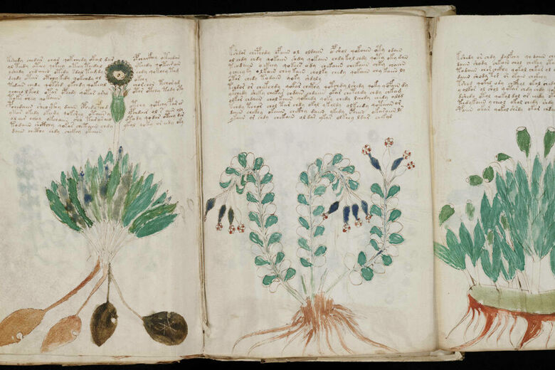 Has Artificial Intelligence Cracked the Voynich Manuscript's Mysterious Code?