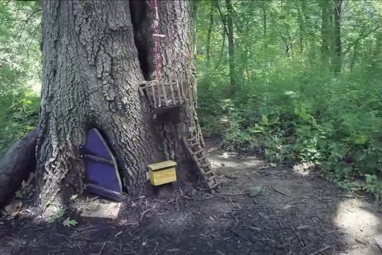 Take a Virtual Tour of the Firefly Forest, a Kansas Park