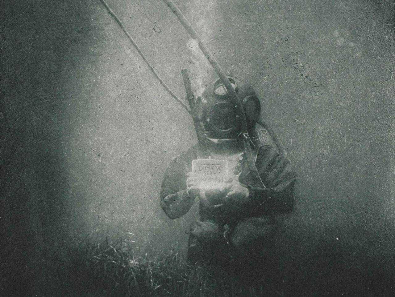 How a 19th-Century Biologist Became an Underwater Photography ...