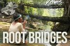 100 Wonders: Where the Bridges Are Grown