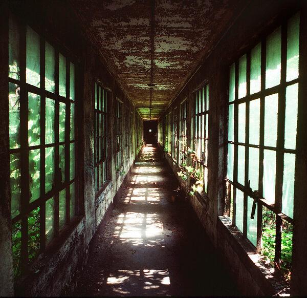 Capturing Ellis Island's Lost Period