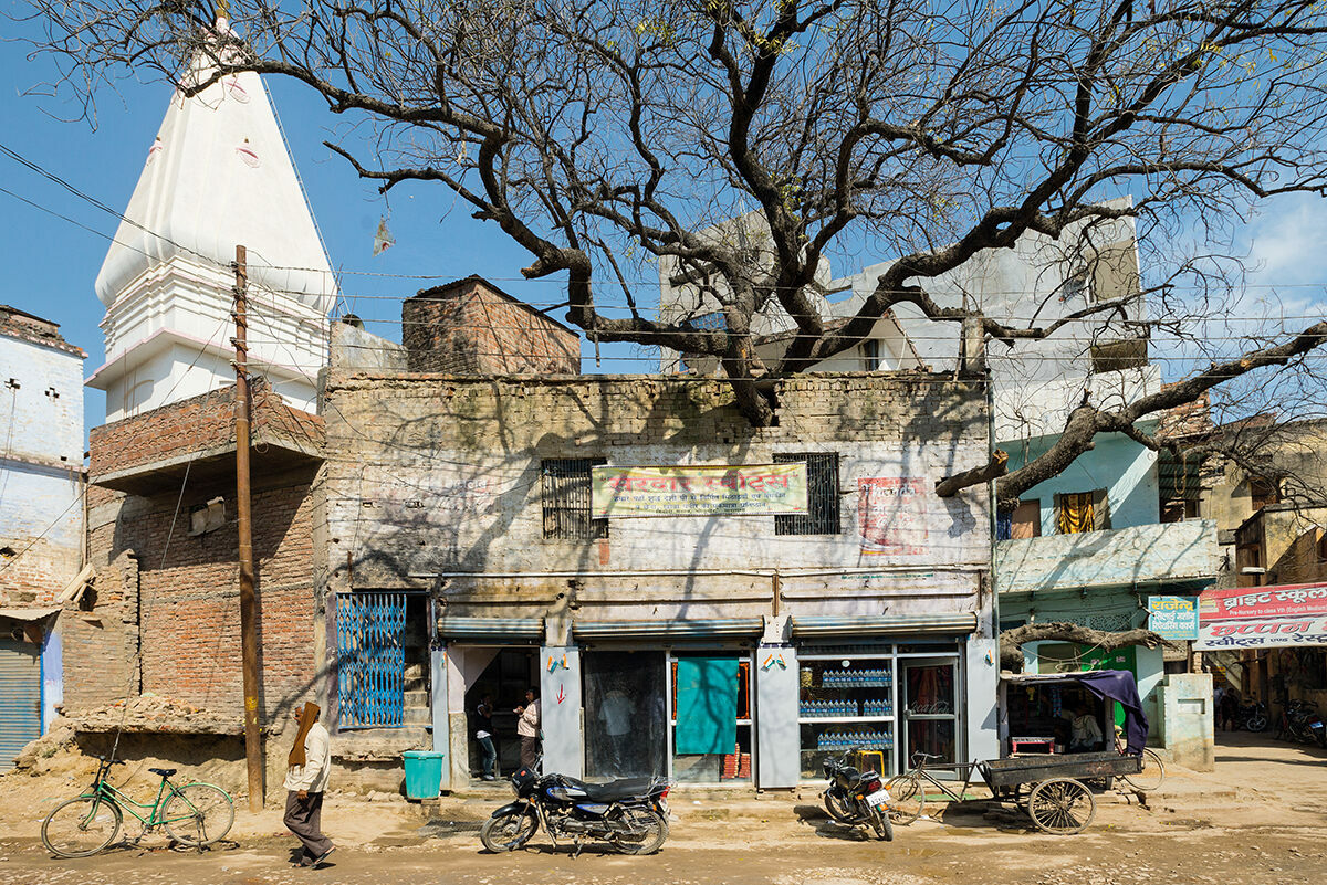 A neem tree poking through a shop in Varanasi, India, from <em>Wise Trees</em>.