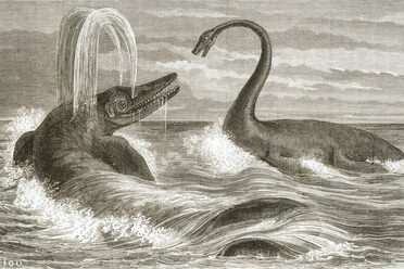 "Was the ""Saurian monster"" a rogue ichthyosaur with an appetite for mutton?"