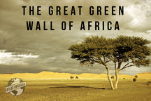 100 Wonders: The Great Green Wall of Africa