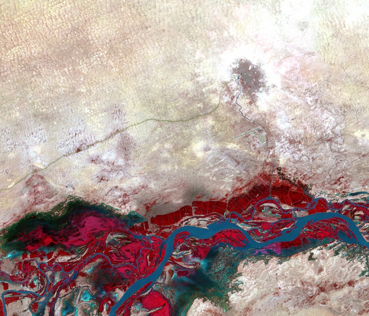 The riparian buffers flanking the Niger River in Timbuktu, Mali, appear in red.