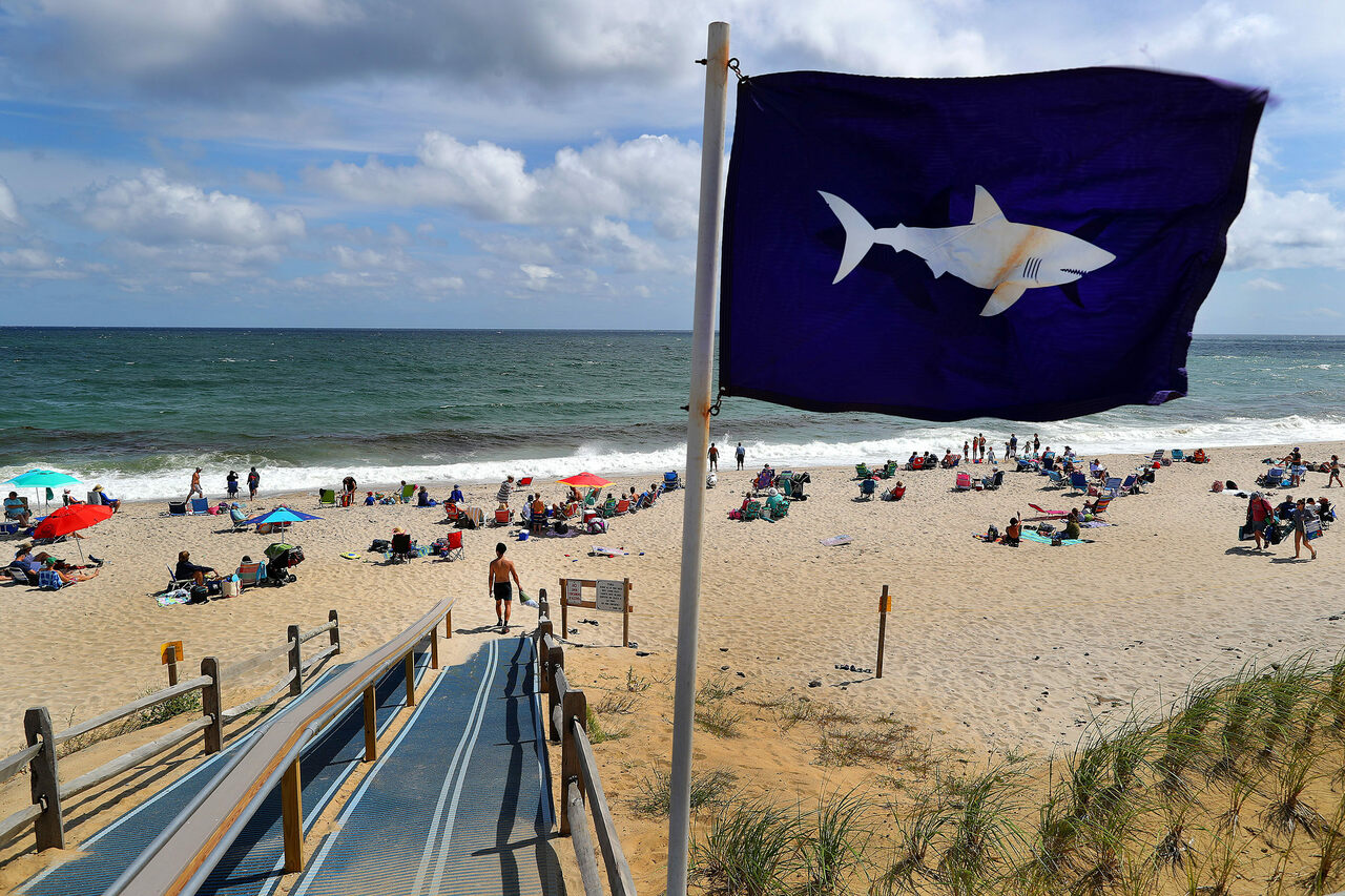 A shark flag at Nauset Beach in Orleans, Massachusetts, alerts visitors to the presence of the animals. Shark sightings are an almost daily occurrence on Cape Cod in summer months.