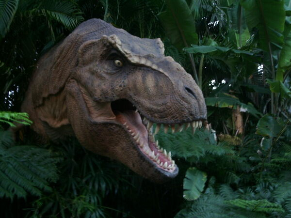 Tyrannosaurs Might Have Enjoyed Making Out Before Sex - Atlas Obscura-4264