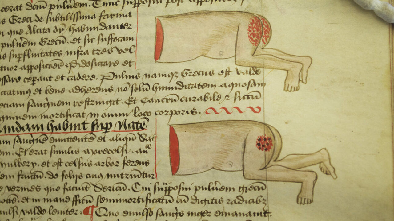 The Strange and Grotesque Doodles in the Margins of Meval ... on