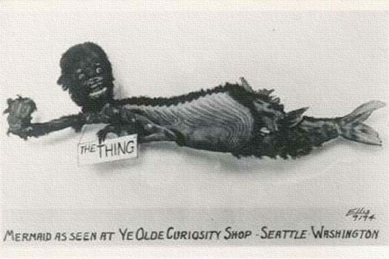 Objects Of Intrigue Fiji Mermaid Atlas Obscura
