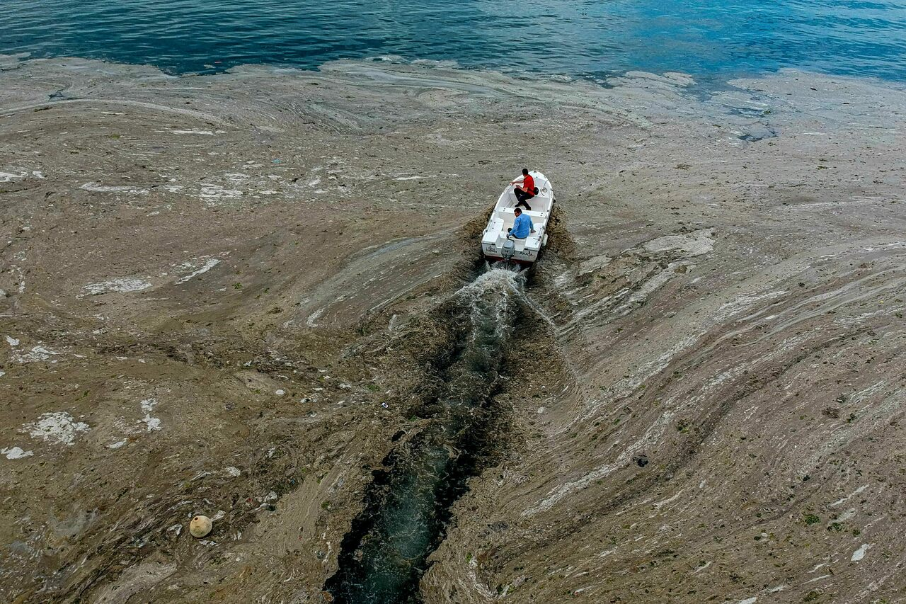 By the beginning of June, sea snot was thick off the coast of Turkey.