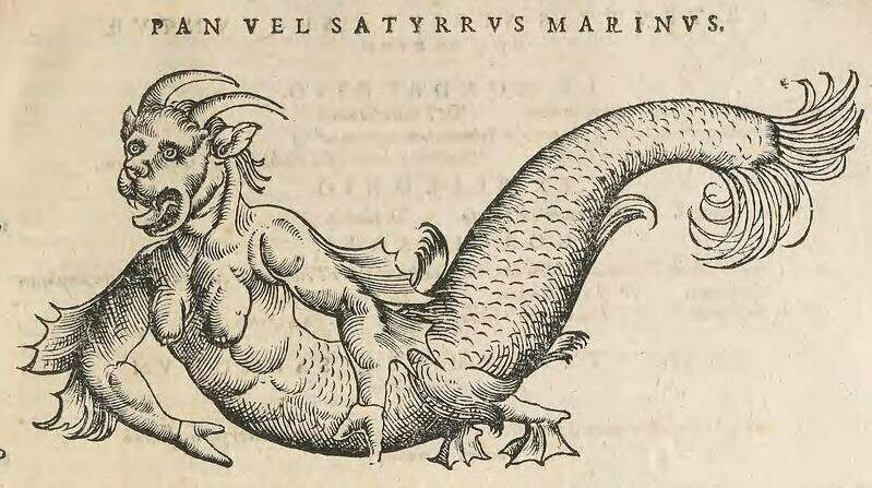 "A ""sea devil"" from Icones animalium (1553)."
