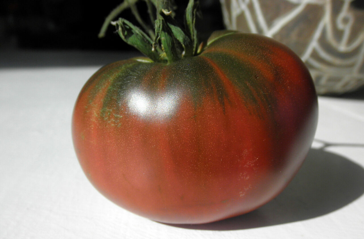A homegrown Paul Robeson tomato.