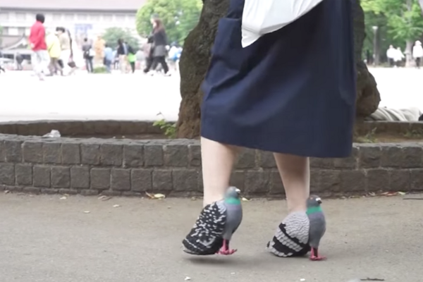 Japanese Lady Pigeon Shoes